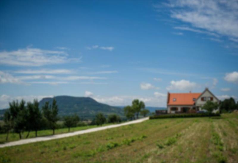 Villa Tolnay Borház