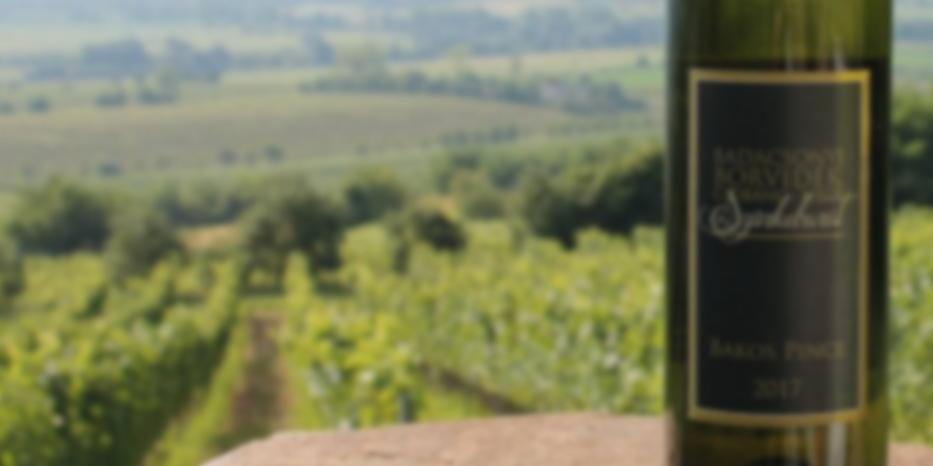 Vertikális Pinot Gris