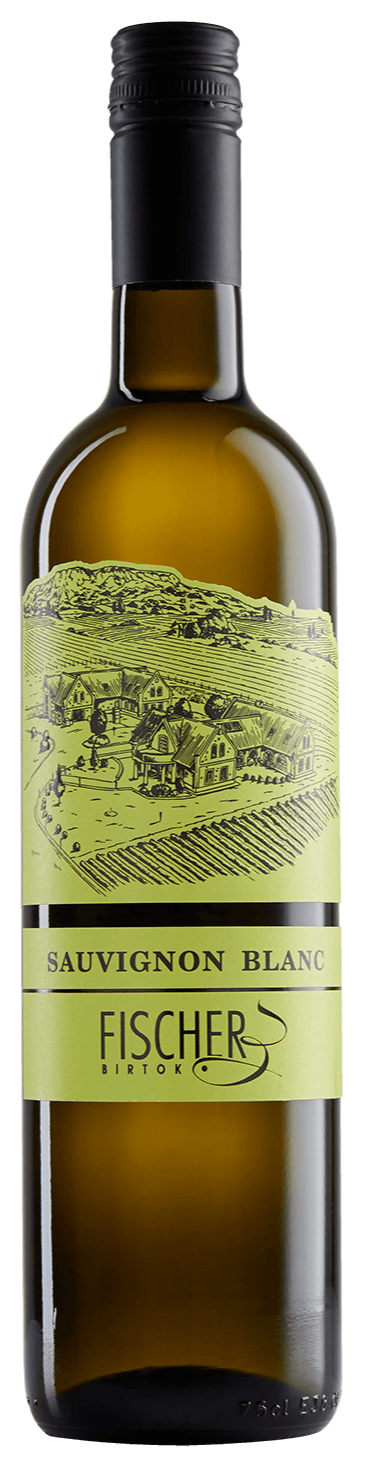 Sauvignon Blanc -  Fischer Birtok